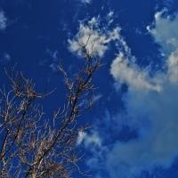 Toccare le nuvole