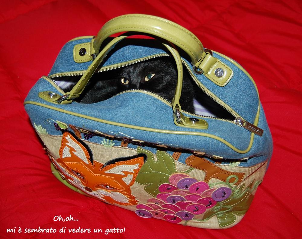 nella borsa